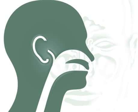 O que é Otorrinolaringologia? Um otorrinolaringologista atua em áreas?